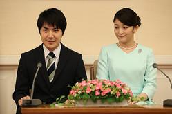 「内親王殿下の配偶者」を「皇族」に加えるという説が提示されている