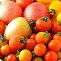 夏野菜と思わせて…トマトの旬は