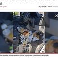ゴミで溢れた車内に警察は「運転に危険を伴う」(画像は『New York Post 2019年5月15日付「Driver fined for 'dangerous' amount of fast-food trash in his car」(Twitter)』のスクリーンショット)