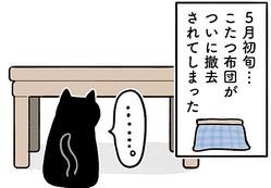 猫あるある?こたつに未練たっぷりな様子が描かれた漫画=AKRさん(@bou128)提供
