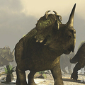 セントロサウルスの想像図。Leemage提供。(c)Raul Lunia / Leemage via AFP