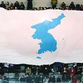 実際の縮尺よりはるかに大きく竹島(韓国名:独島)が描かれた統一旗。アイスホッケー合同チームの練習試合会場で物議を醸した。
