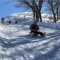 2000メートルを颯爽と滑り降りるそりコースがオープン/写真は主催者提供