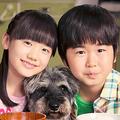 鈴木福と芦田愛菜が7年ぶり「マルモリ」声変わりで半音キー下げる