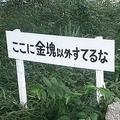 金塊...(画像は九十九屋さんた@tikutakuさん)