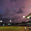 米マイナーリーグでなんともお粗末なバント処理が…【写真:Getty Images】