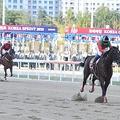 日本で6連敗中の馬にボロ負け 韓国競馬界が抱える課題