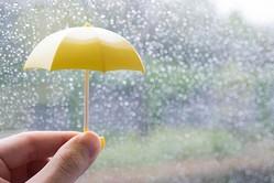 【梅雨】意外と知らない傘のお手入れ方法