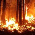 アメリカ西部の大規模火災「過激派団体が放火」と誤情報が流行