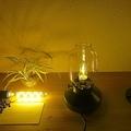 IKEAの電球でお部屋をイメチェン