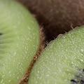 「キウイは皮ごと食べる」フルーツの専門家、世間の常識に一石