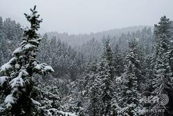 米コロラド州ロッキー山脈の麓で観測された雪(2020年9月8日撮影)。(c)Eli IMADALI / AFP