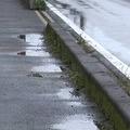「踏み間違えた」反対側の歩道に乗り上げる 女性はねられ死亡