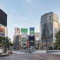 外出自粛要請を受けて無人となった渋谷スクランブル交差点=2020年5月3日(paru - stock.adobe.com)
