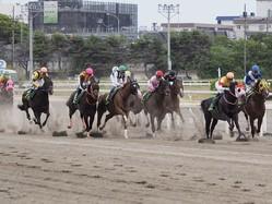 【かしわ記念】平田師「帝王賞に向かいます」レース後 関係者コメント
