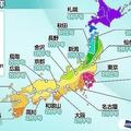 花粉のシーズン開始は2月初め 東日本を中心に6年ぶりの大量飛散か