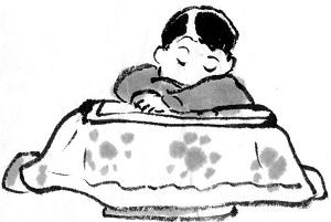 [画像] ずっと憧れていた! 日本人が冬を乗り越える「神器」を買ってみた=中国メディア