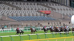 戦後初めて無観客で行われた昨年の日本ダービー。コントレイル(左)が無敗で勝利を収めるかに注目が集まり、馬券はネット・電話投票のみながら230億円以上の売り上げを確保した=2020年5月31日、東京競馬場(代表撮影)