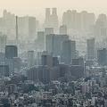 一橋大名誉教授が指摘 日本で「中小企業」が激減している根本原因