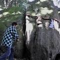 神谷神社「鬼滅の岩」が話題