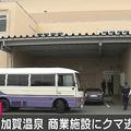 石川県・加賀温泉の商業施設にクマが逃げ込む けが人の情報はなし
