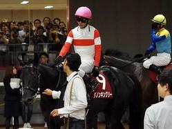 【毎日王冠】戸崎「心身共に成長した」ダノンキングリーが圧巻の走りで勝利!