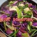 家の材料で作った野菜炒めがエヴァンゲリオン風に「うまかったです」