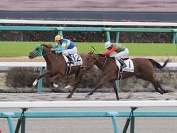 【中山5R/新馬】キングスバレイがハナ差凌ぎきる