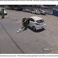 飼い主に置き去りにされた犬(画像は『LADbible 2020年7月2日付「Disabled Dog Dumped By Owner Twice In One Day Finds Loving Home」(Credit: CEN)』のスクリーンショット)