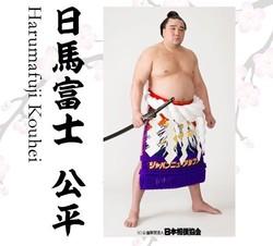 横綱・日馬富士が引退表明(画像は伊勢ヶ浜部屋の公式HPから)