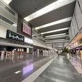 県外移動が解禁されるも閑散 まるで自粛期間状態の羽田空港