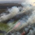 ハワイ火災拡大 空港に避難指示