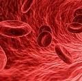 A型をO型に変換する酵素が見つかる 万能血液の製造が大きく前進か