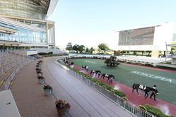 2020年8月の小倉競馬も無観客で行われていた