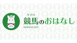 【京都6R】チュウワノキセキが3馬身差完勝