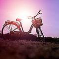 日本は自動車大国だが、同時に「自転車」も極めて身近な存在だ。自転車産業振興協会によると、2018年の世帯保有率は66.3%と、6割以上に上る。中国メディアは、「日本人は自転車が大好きだ」と紹介する記事を掲載した。(イメージ写真提供:123RF)