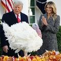 米首都ワシントンのホワイトハウスのローズガーデンで、七面鳥「コーン」に「恩赦」を与えるドナルド・トランプ大統領とファーストレディーのメラニア・トランプ氏(2020年11月24日撮影)。(c)MANDEL NGAN / AFP