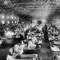 スペインかぜ 接種なく収束の謎