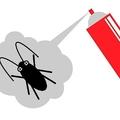 ゴキブリを退治する最適&最悪な方法 アメリカのゴキ退治メソッド