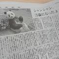 シャンシャンとしてシンシンが掲載された朝日新聞の紙面