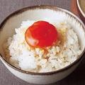 極上の卵かけご飯のでき上がり!/調理:たくまたまえ 撮影:澤木央子