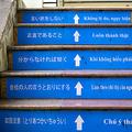 失踪多数 日本が受け入れ停止へ
