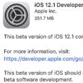 ios12.1 beta