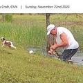 ワニと闘い、愛犬を救った70代男性(画像は『WPEC CBS 12 2020年11月22日付「WATCH: Florida retiree wrestles puppy from jaws of alligator」(CNN)』のスクリーンショット)