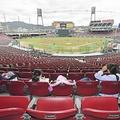 広島カープが本拠地観客席の一部を一般開放 「勇気を与えられたら」