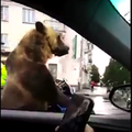 Niks Ļeoņenko/YouTube