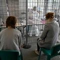 フランス・タンテニアックで、新型ウイルス感染疑いの患者専用に設けられた医療施設を訪れた人々(2020年3月27日撮影、資料写真)。(c)Damien MEYER / AFP