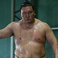 ついに日本国籍取得を決断した白鵬(撮影:ヤナガワゴーッ!)