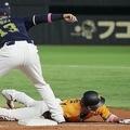 5回巨人無死一、二塁、打者ウィーラーのとき、けん制に帰塁する一走坂本。一塁手オスナ(C)Kyodo News