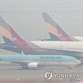 霧の仁川空港に並ぶ大韓航空機とアシアナ航空機=13日、仁川(聯合ニュース)
